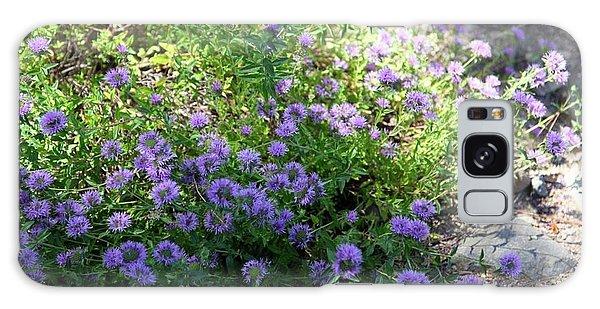 Purple Bachelor Button Flower Galaxy Case