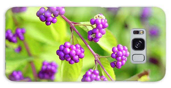 Purple Berries Galaxy Case
