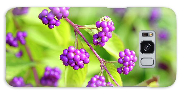 Purple Berries Galaxy Case