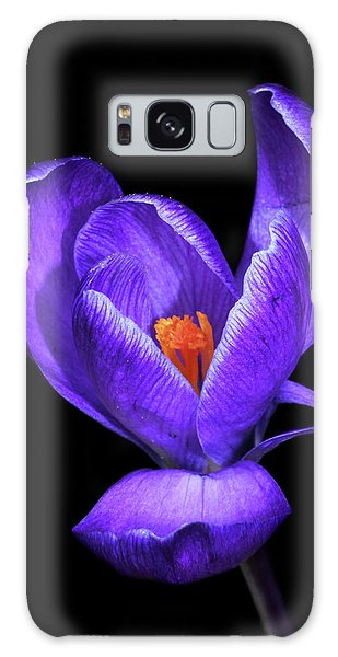 Purple Crocus Galaxy Case