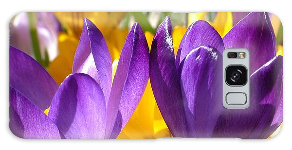 Purple Crocuses Galaxy Case