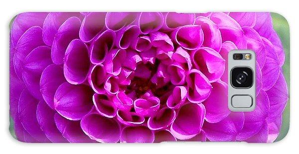 Purple Dahlia Galaxy Case