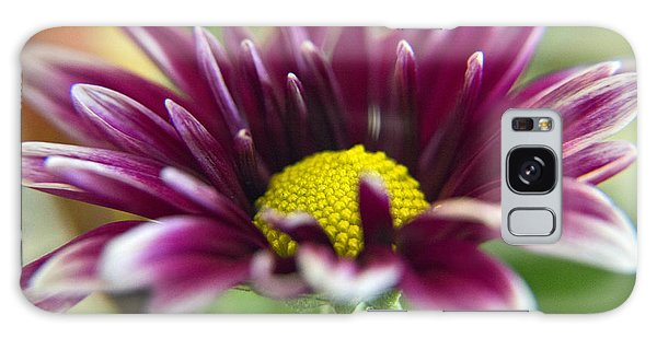 Purple Daisy Galaxy Case