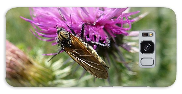 Purple Dandelions 1 Galaxy Case