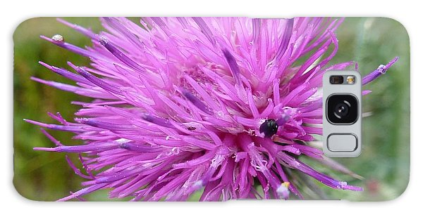 Purple Dandelions 2 Galaxy Case