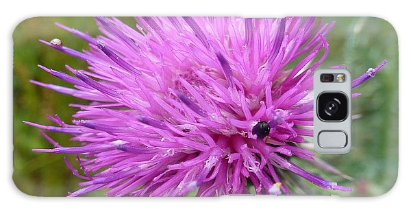 Purple Dandelions 2 Galaxy Case by Jean Bernard Roussilhe
