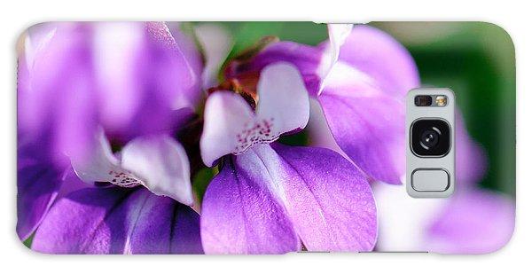 Purple Dream Galaxy Case