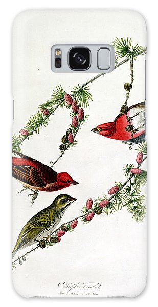 Finch Galaxy S8 Case - Purple Finch by John James Audubon