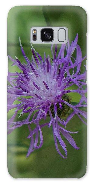 Purple Flower 8 Galaxy Case