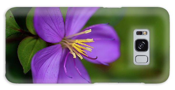 Purple Flower Macro Galaxy Case