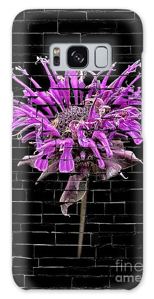 Purple Flower Under Bricks Galaxy Case