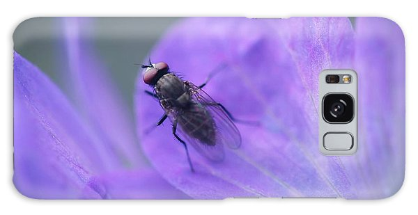 Purple Fly Galaxy Case