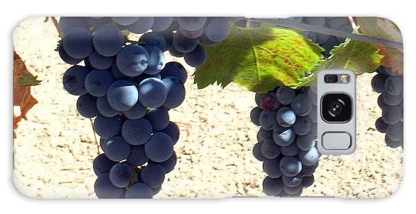 Purple Grapes On Vine Galaxy Case