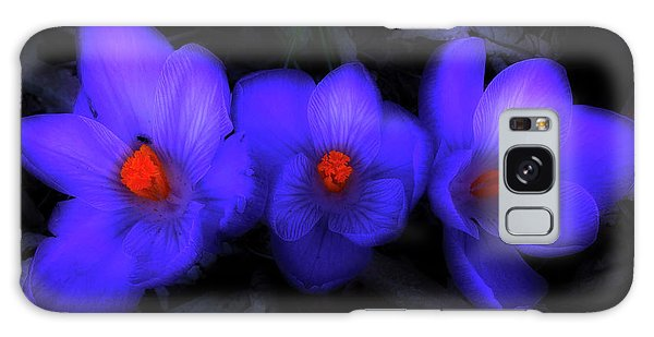 Beautiful Blue Purple Spring Crocus Blooms Galaxy Case