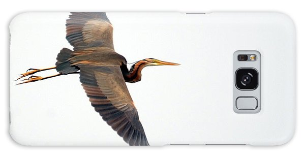 Purple Heron In Flight Galaxy Case
