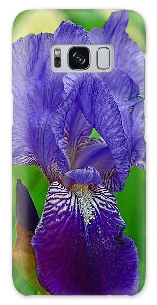 Purple Iris Galaxy Case by Lisa Phillips