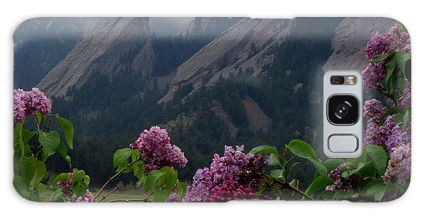 Purple Lilacs Flatirons Galaxy Case