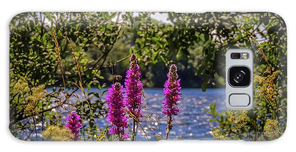 Galaxy Case featuring the photograph Purple Loosestrife In The Irish Countryside by James Truett