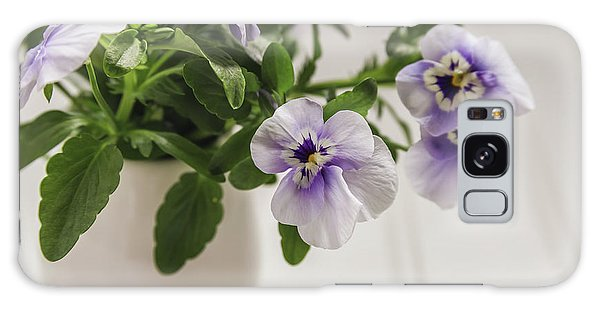 Galaxy Case featuring the photograph Purple Pansy Flowers by Kim Hojnacki