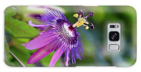 Purple Passion Flower Galaxy Case