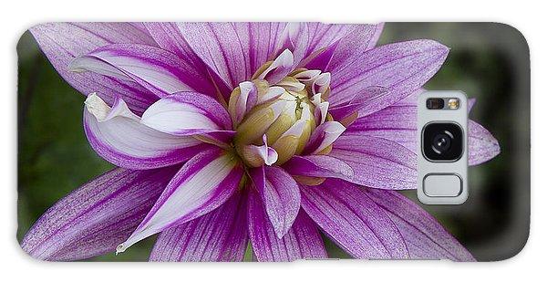 Purple Pink Dahlia Galaxy Case