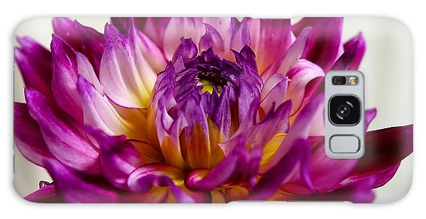 Galaxy Case featuring the photograph Purple Sunset Flower 1 by Marianne Dow
