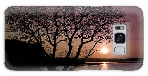 Purple Sunset With Tree And Lake Galaxy Case by Gabor Pozsgai