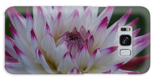 Purple Tipped Starburst Dahlia Galaxy Case