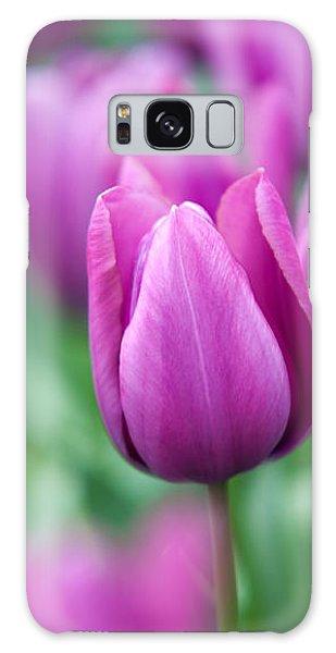 Purple Tulips Of Keukenhof Galaxy Case