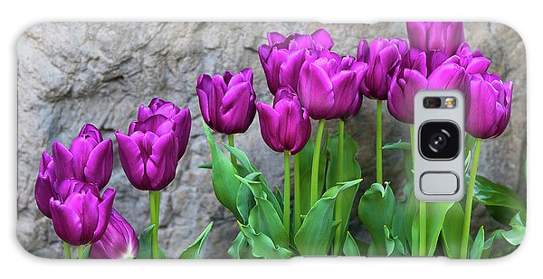 Tulips Galaxy Case - Purple Tulips by Tom Mc Nemar