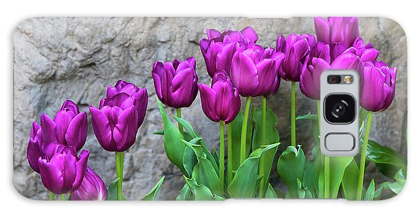 Tulip Galaxy S8 Case - Purple Tulips by Tom Mc Nemar