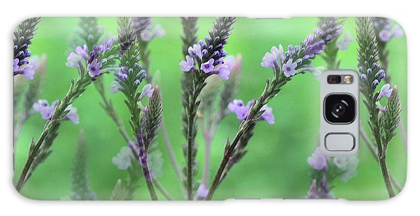 Purple Vervain Dreams Galaxy Case