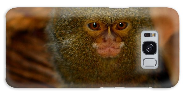 Pygmy Marmoset Galaxy Case