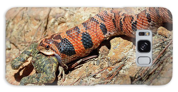 Pygmy Rattlesnake Gorging On A Frog Galaxy Case