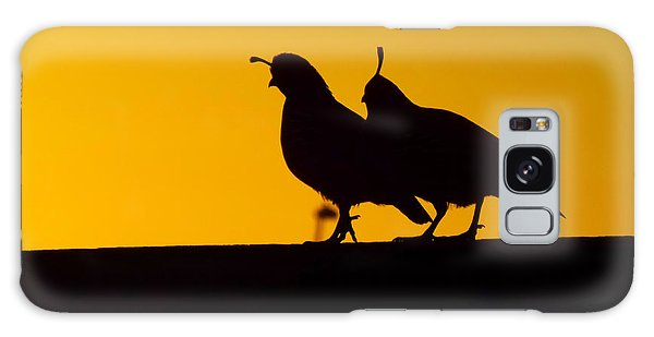 Quail At Sunset Galaxy Case