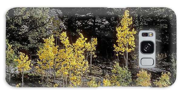 Aspens In Fall At Eleven Mile Canyon, Colorado Galaxy Case by John Brink