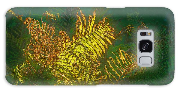 Quantum Fern.... Galaxy Case