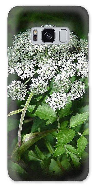 Queen Ann Lace Galaxy Case