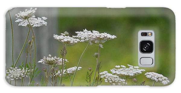 Queen Anne Lace Wildflowers Galaxy Case