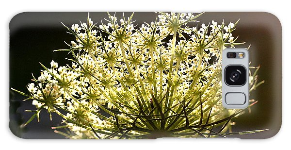 Queen Anne's Lace Galaxy Case by Diane Merkle