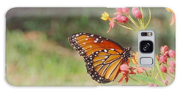 Queen Butterfly On Milkweed Galaxy Case by Jayne Wilson