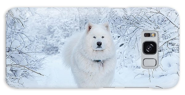 Quinn The Mighty Samoyed Galaxy Case