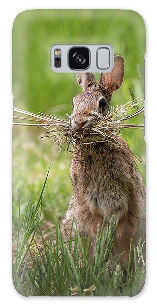 Rabbit Collector  Galaxy Case by Terry DeLuco