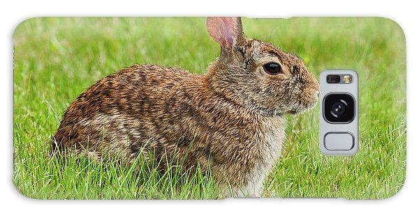 Rabbit In A Grassy Meadow Galaxy Case