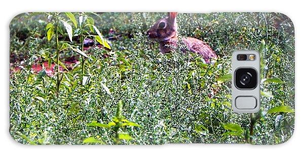 Rabbit In Field Galaxy Case