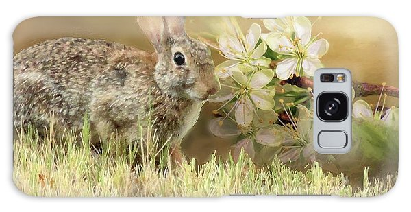 Eastern Cottontail Rabbit In Grass Galaxy Case