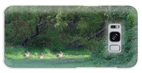 Rabbit Meadow Galaxy Case