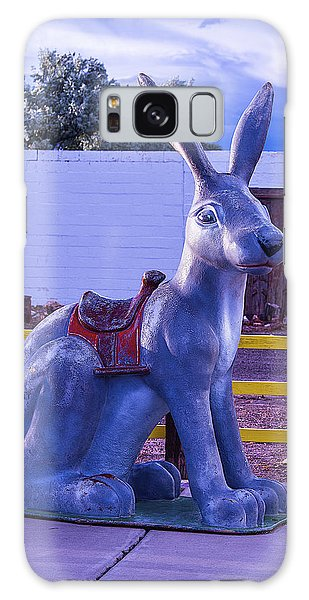 66 Galaxy Case - Rabbit Ride Route 66 by Garry Gay