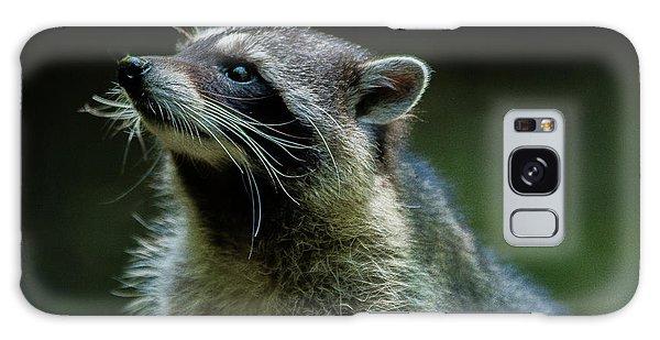 Raccoon 1 Galaxy Case