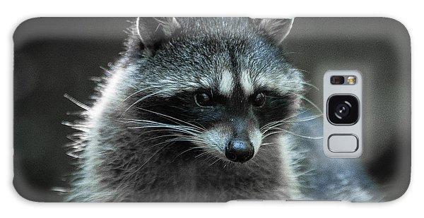 Raccoon 2 Galaxy Case